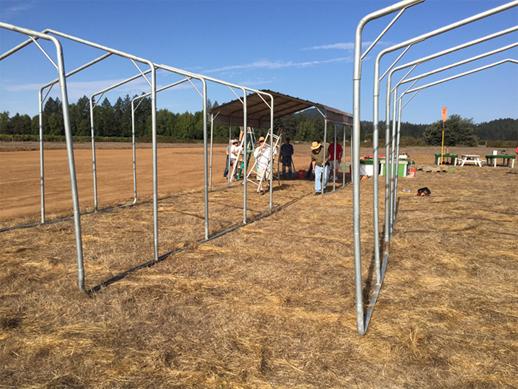new Field 2015